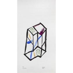 DUPORT Michel - Cage couleur