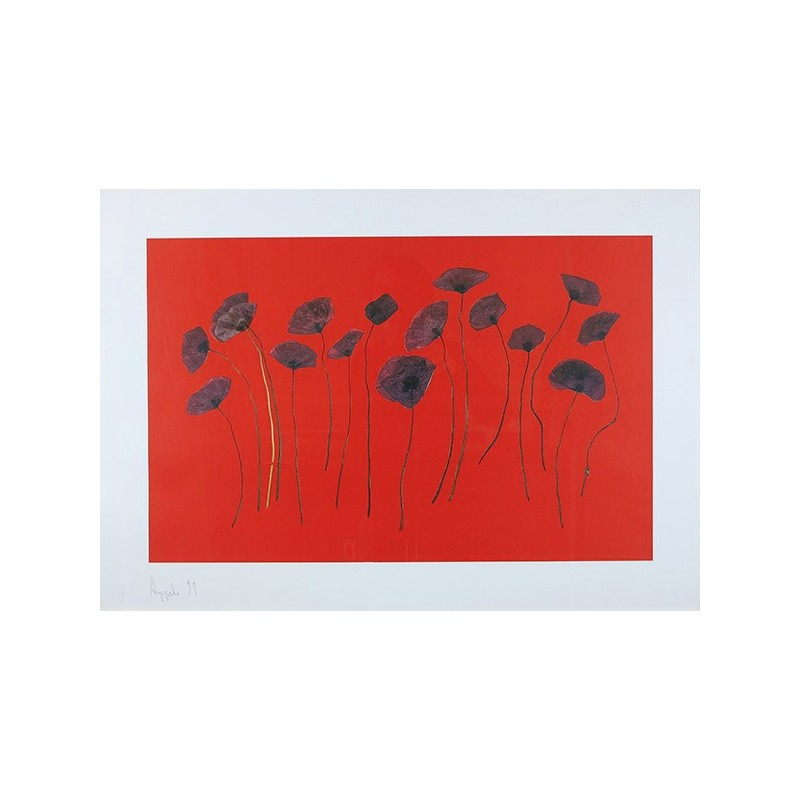 AUPPERLE Roger - Coquelicots