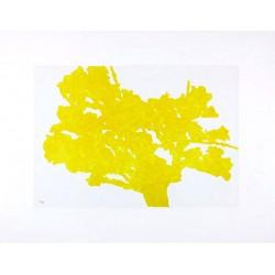 HOLLAN Alexandre - Arbre jaune